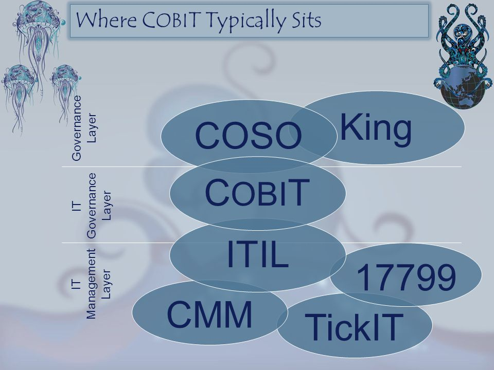 Where COBIT Typically Sits