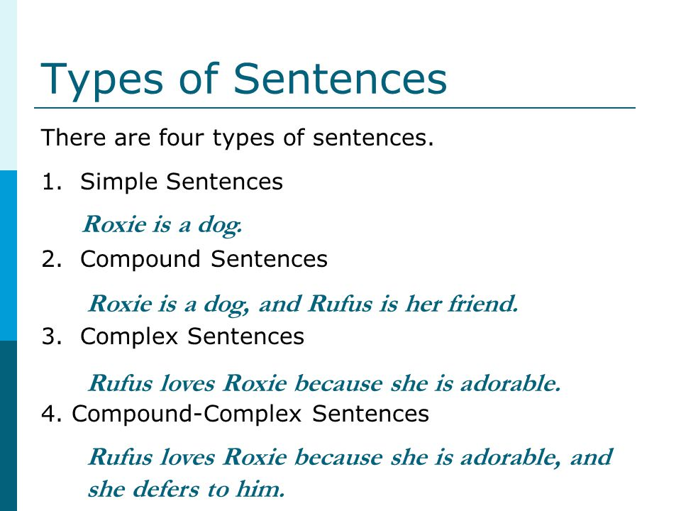 Types of Sentences Roxie is a dog.