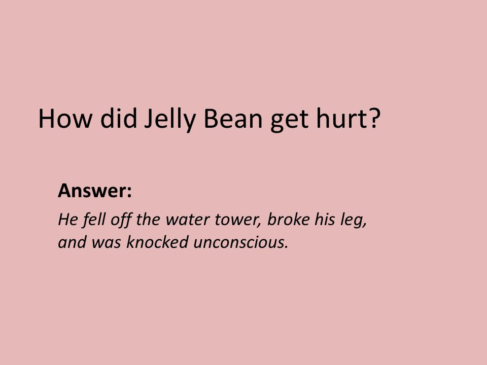 How did Jelly Bean get hurt