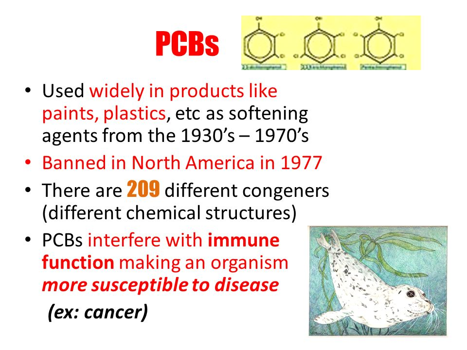 PCBs Used widely in products like paints, plastics, etc as softening agents from the 1930's – 1970's.