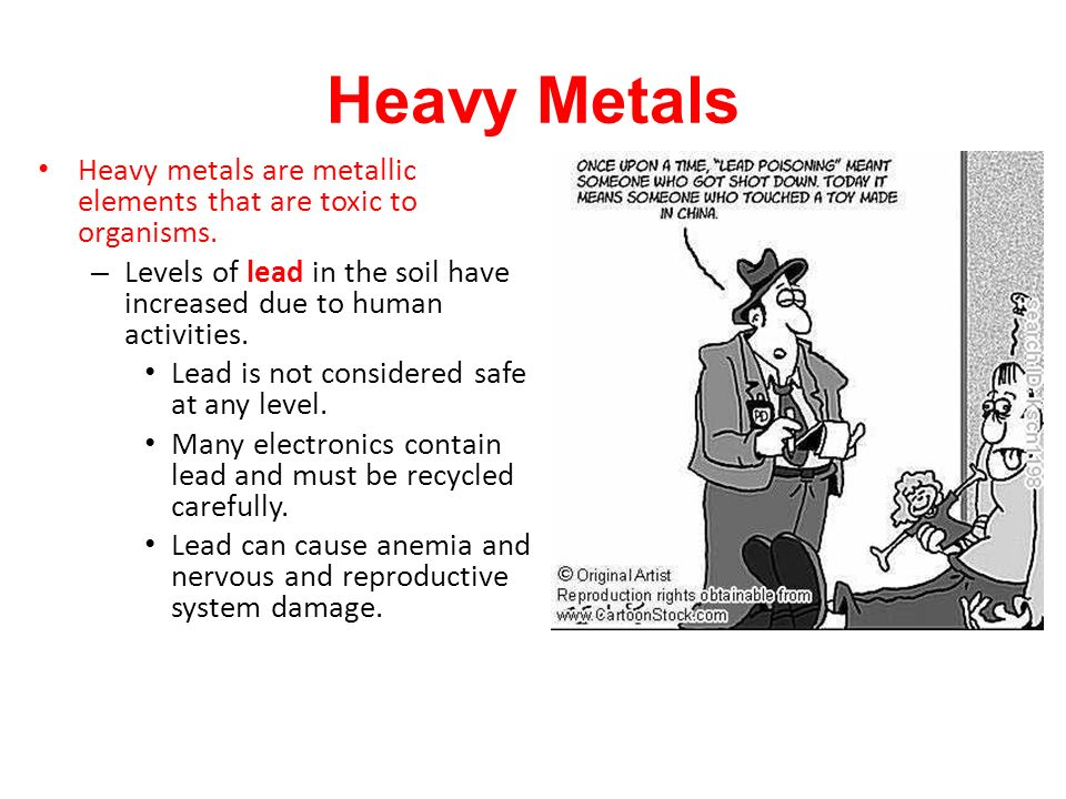 Heavy Metals Heavy metals are metallic elements that are toxic to organisms. Levels of lead in the soil have increased due to human activities.