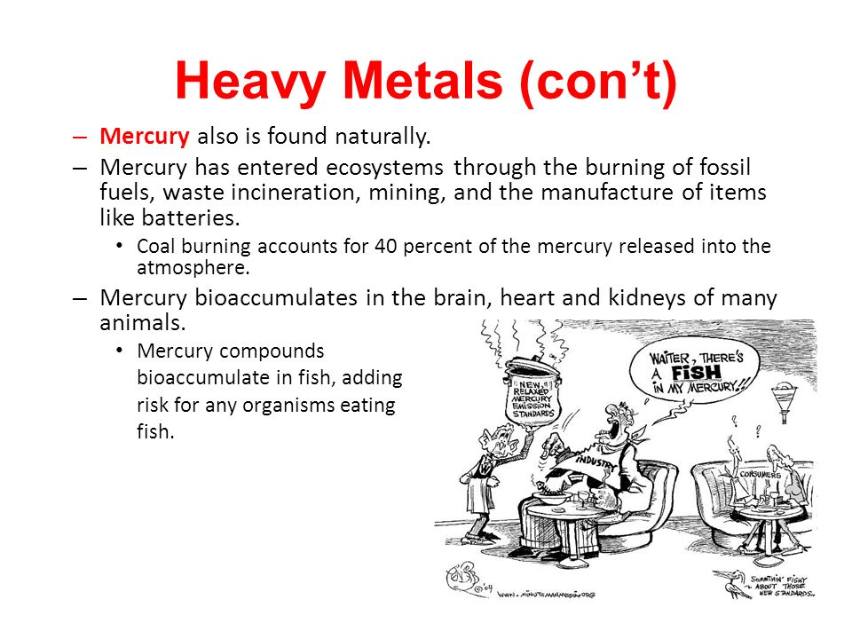 Heavy Metals (con't) Mercury also is found naturally.