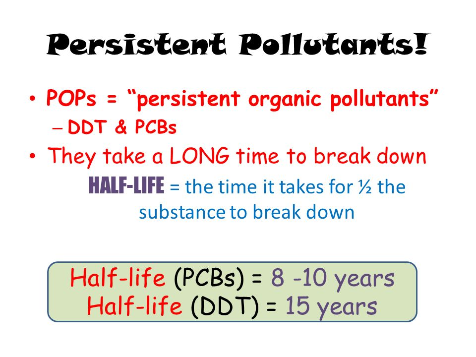 Persistent Pollutants!