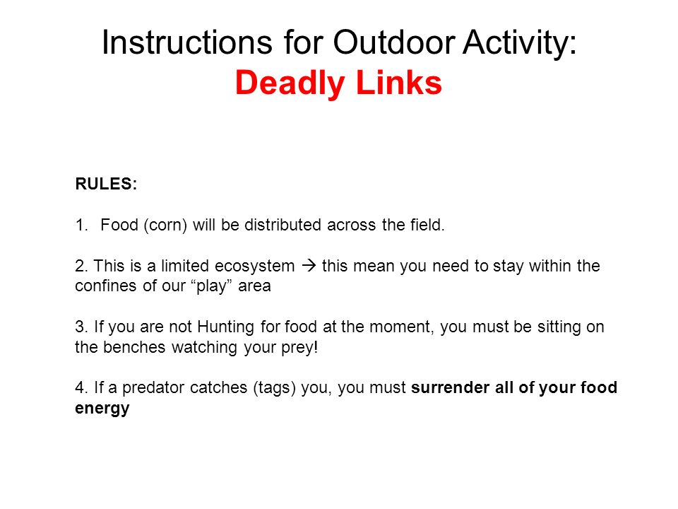Instructions for Outdoor Activity: Deadly Links