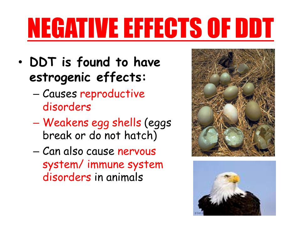 NEGATIVE EFFECTS OF DDT