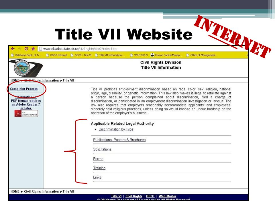 Title VII Website INTERNET