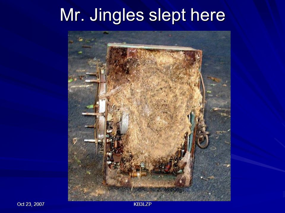 Mr. Jingles slept here Oct 23, 2007 KB3LZP