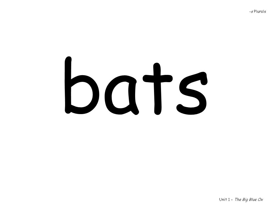 -s Plurals bats Unit 1 – The Big Blue Ox