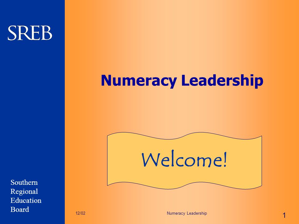 Numeracy Leadership Welcome! 12/02 Numeracy Leadership
