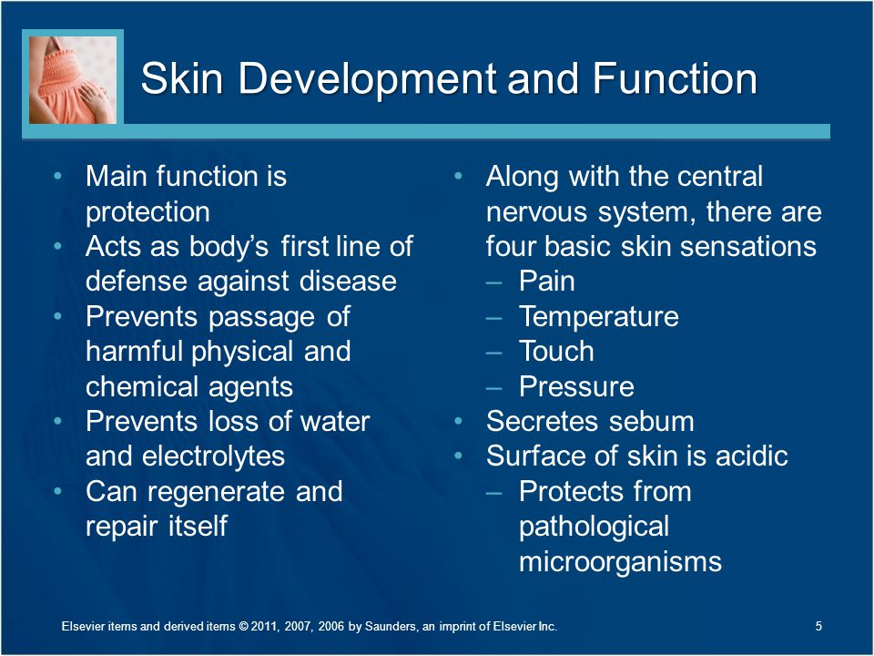 Skin Development and Function