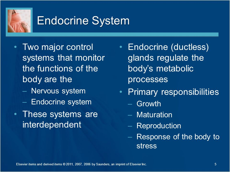 Endocrine System Two major control systems that monitor the functions of the body are the. Nervous system.