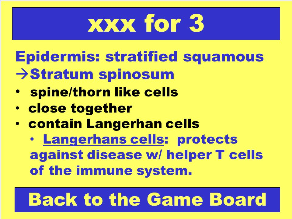 xxx for 3 Back to the Game Board
