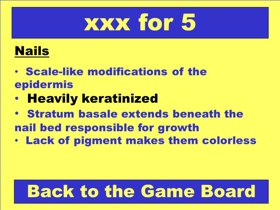 xxx for 5 Back to the Game Board Nails Heavily keratinized