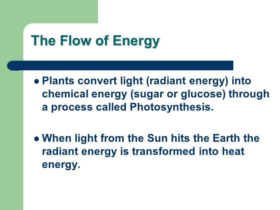 The Flow of Energy Plants convert light (radiant energy) into chemical energy (sugar or glucose) through a process called Photosynthesis.