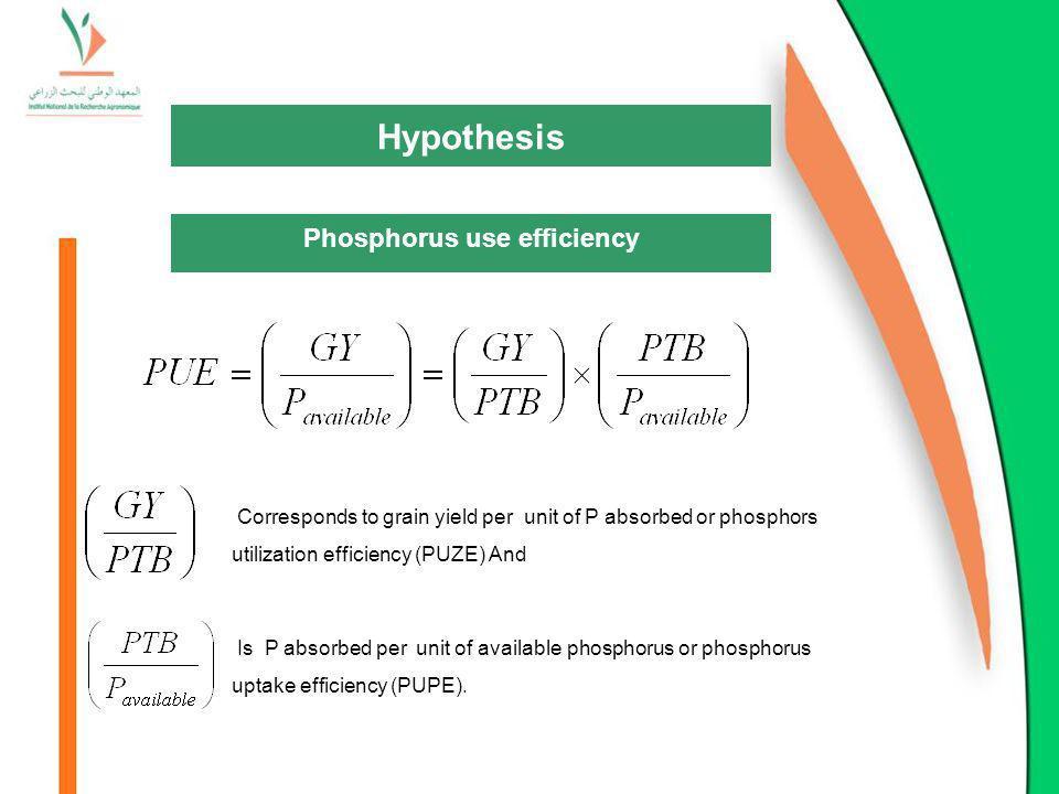 Phosphorus use efficiency