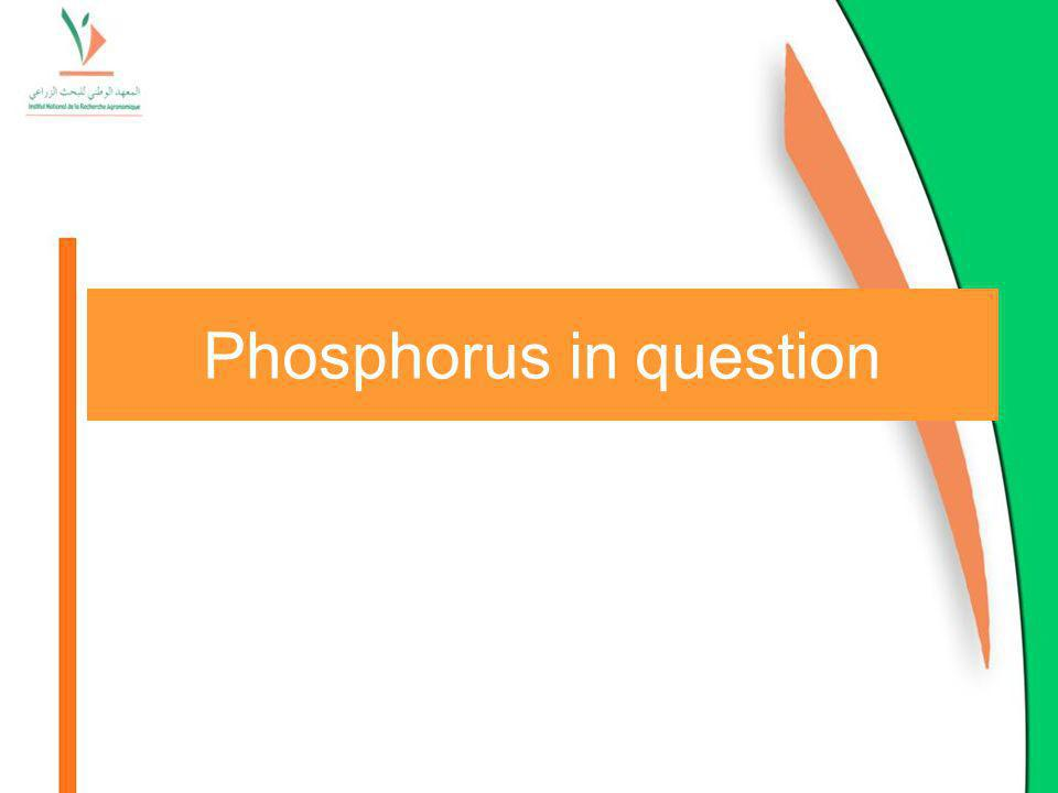 Phosphorus in question