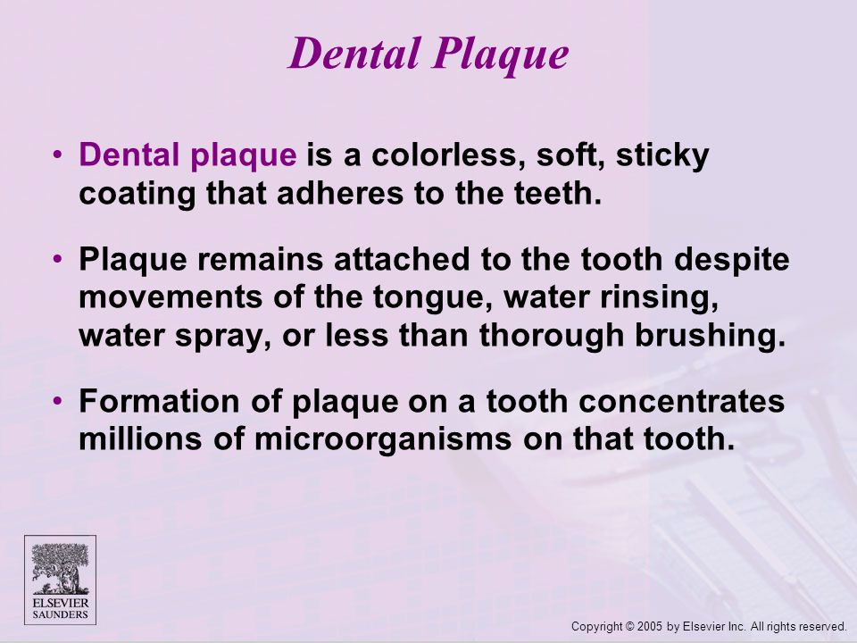 Dental Plaque Dental plaque is a colorless, soft, sticky coating that adheres to the teeth.