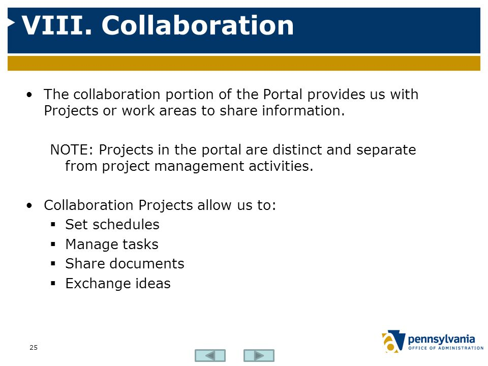 VIII. Collaboration The collaboration portion of the Portal provides us with Projects or work areas to share information.