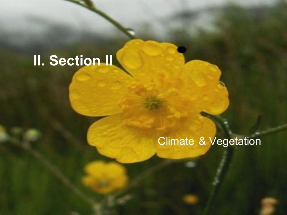 II. Section II Climate & Vegetation