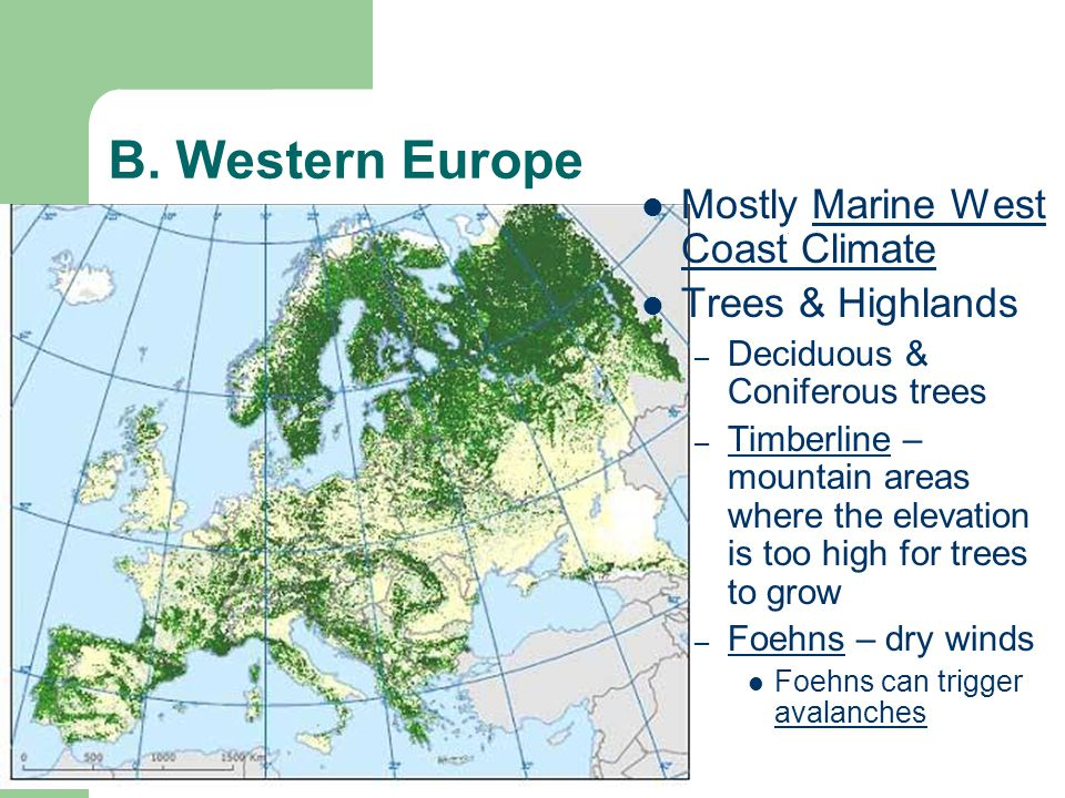 B. Western Europe Mostly Marine West Coast Climate Trees & Highlands