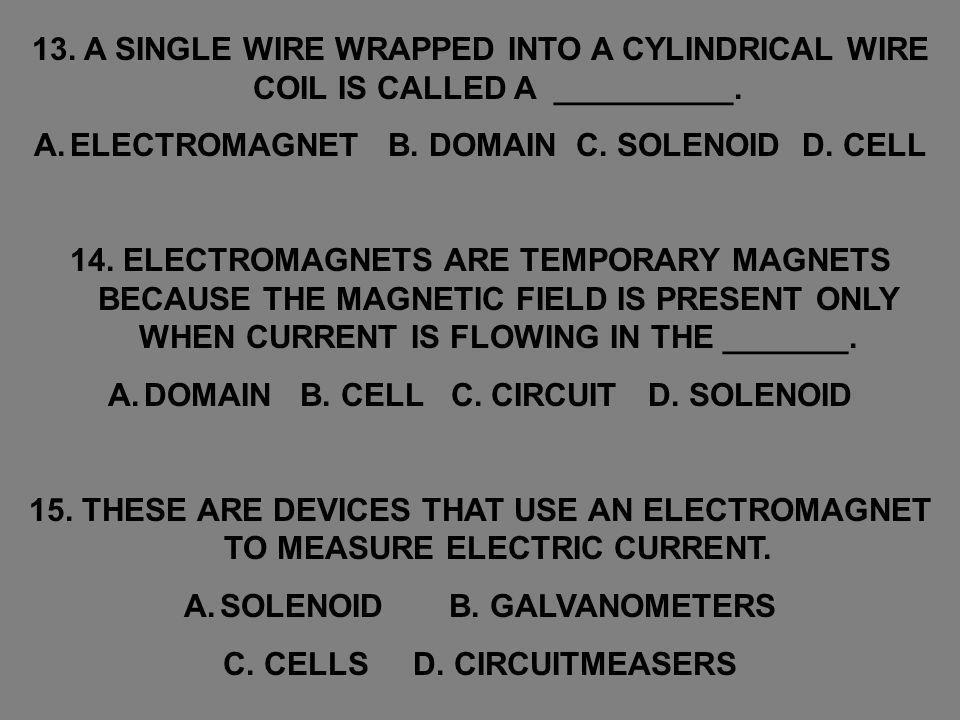 ELECTROMAGNET B. DOMAIN C. SOLENOID D. CELL
