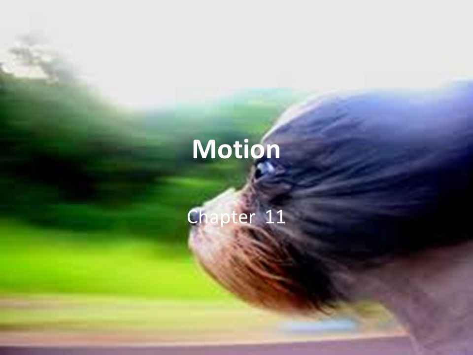 Motion Chapter 11