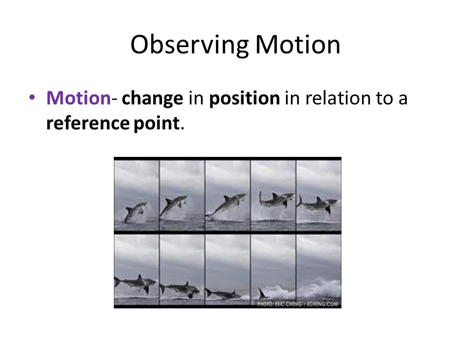 Observing Motion Motion- change in position in relation to a reference point.