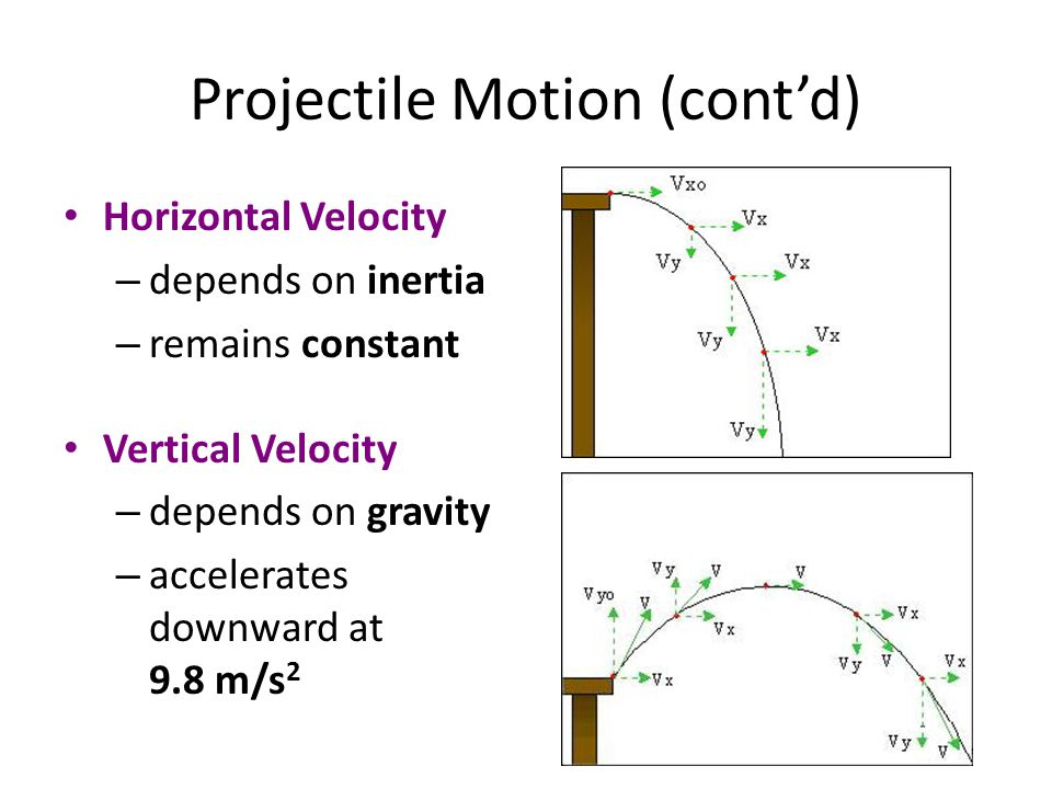 Projectile Motion (cont'd)