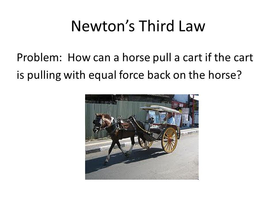 Newton's Third Law Problem: How can a horse pull a cart if the cart is pulling with equal force back on the horse.