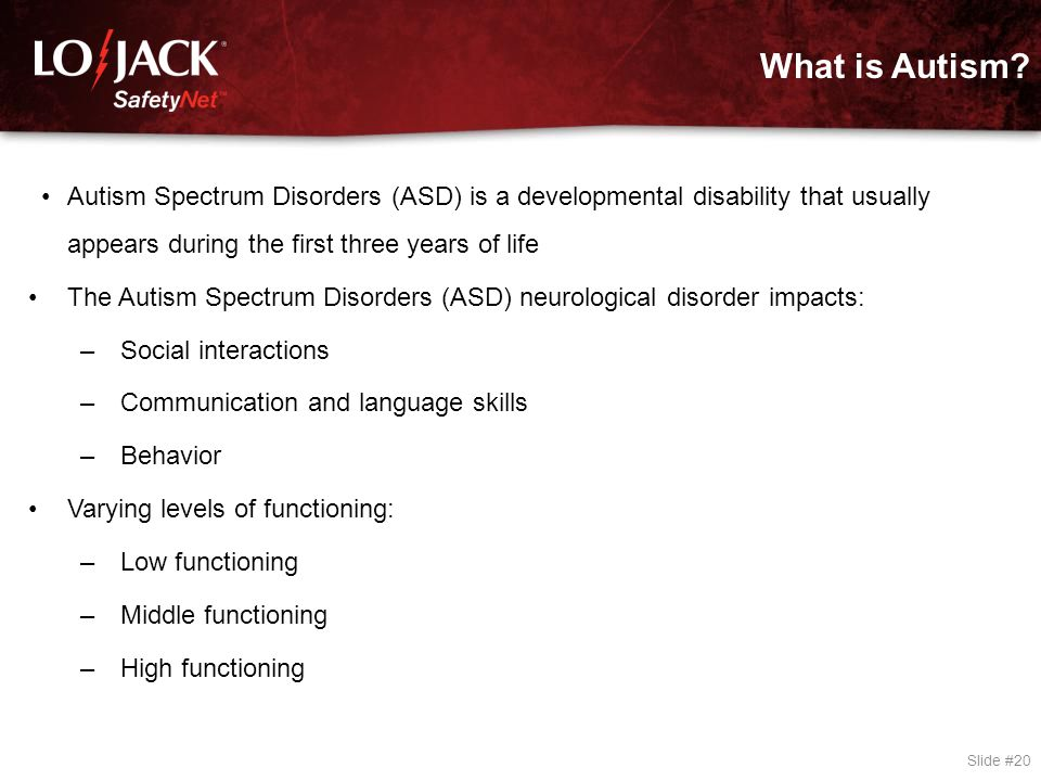 The 5 Categories of Autism