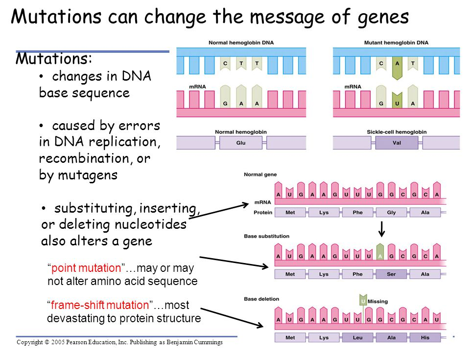 Mutations can change the message of genes