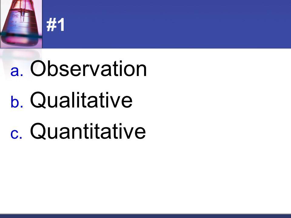 #1 Observation Qualitative Quantitative