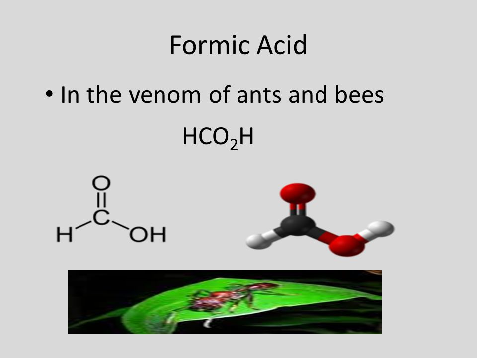 Formic Acid In the venom of ants and bees HCO2H