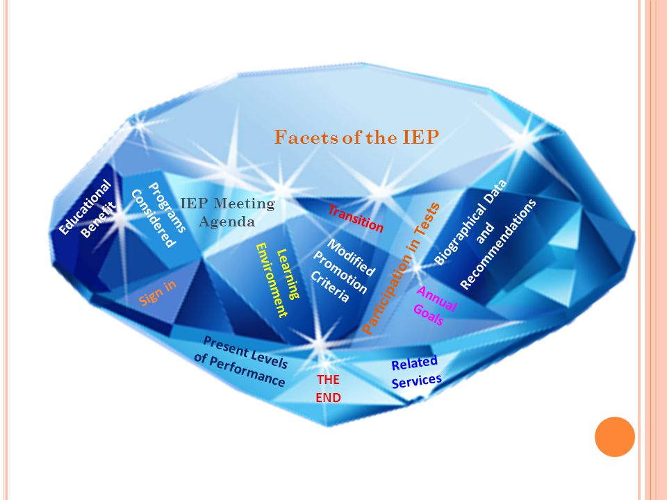 Facets of the IEP Educational Programs Considered Biographical Data