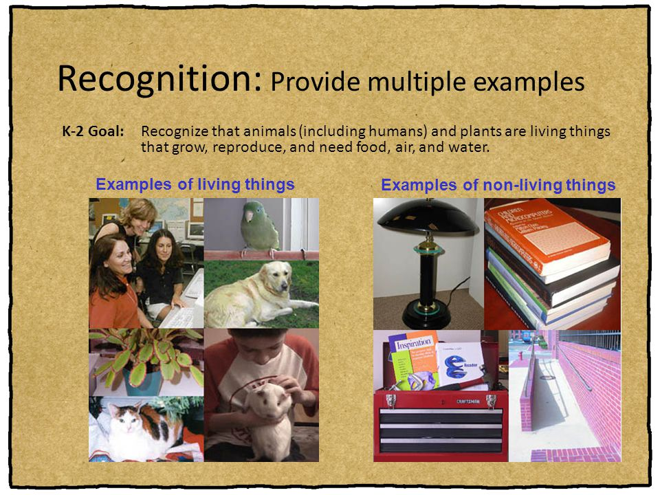 Recognition: Provide multiple examples
