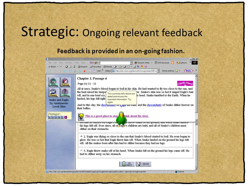 Strategic: Ongoing relevant feedback
