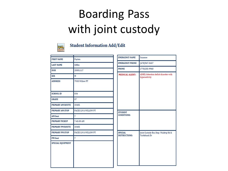 Boarding Pass with joint custody