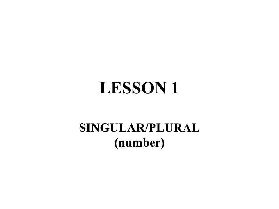 SINGULAR/PLURAL (number)