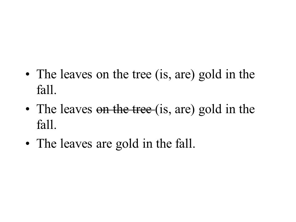 The leaves on the tree (is, are) gold in the fall.