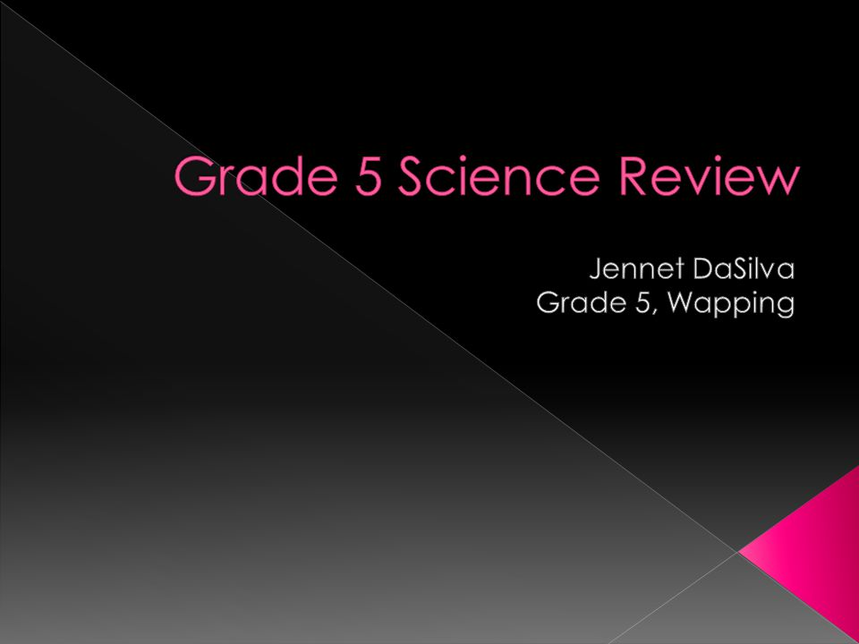 Jennet DaSilva Grade 5, Wapping