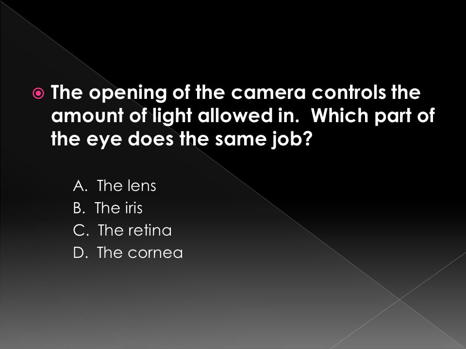 The opening of the camera controls the amount of light allowed in