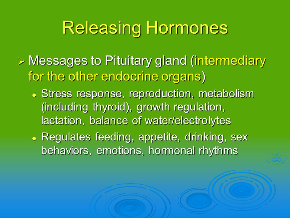 Releasing Hormones Messages to Pituitary gland (intermediary for the other endocrine organs)