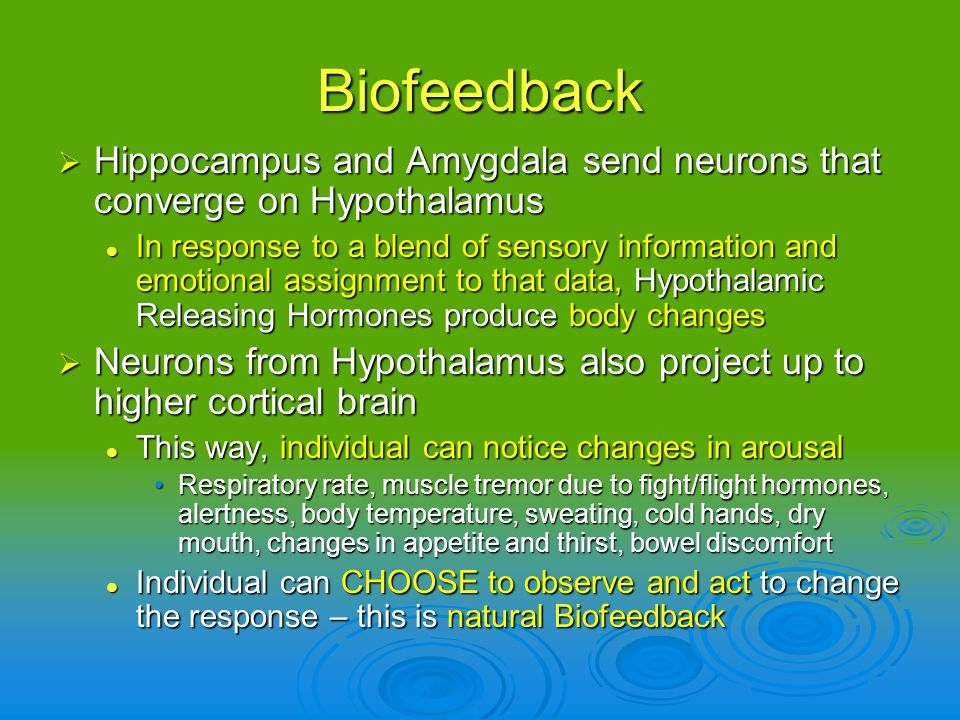 Biofeedback Hippocampus and Amygdala send neurons that converge on Hypothalamus.