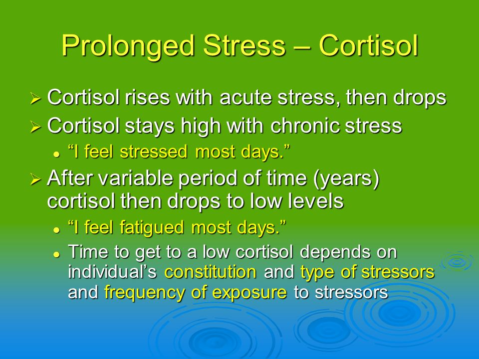 Prolonged Stress – Cortisol