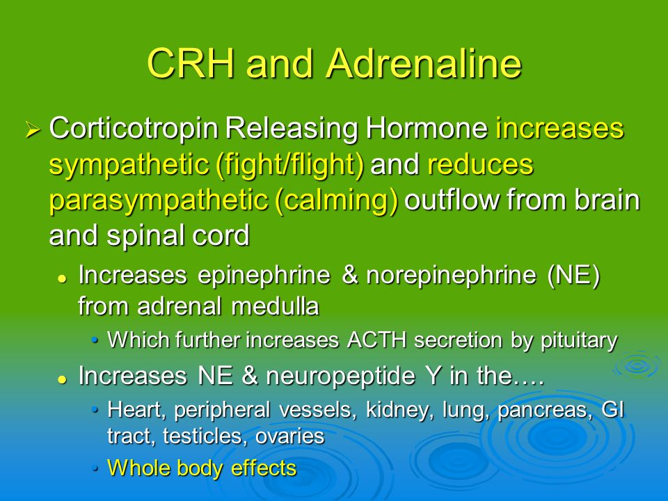 CRH and Adrenaline