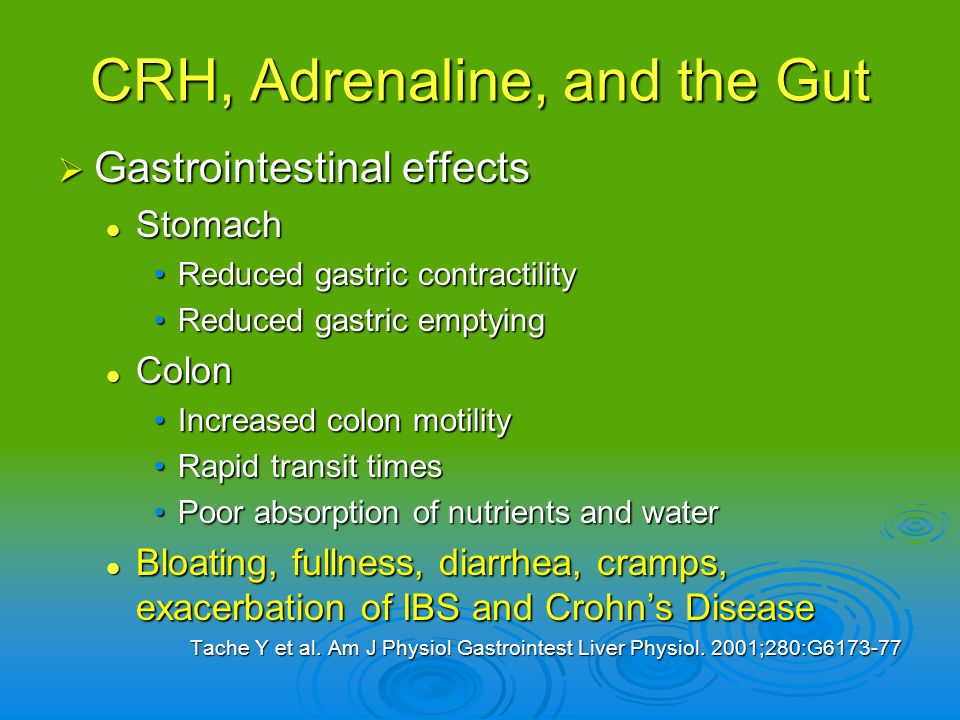 CRH, Adrenaline, and the Gut