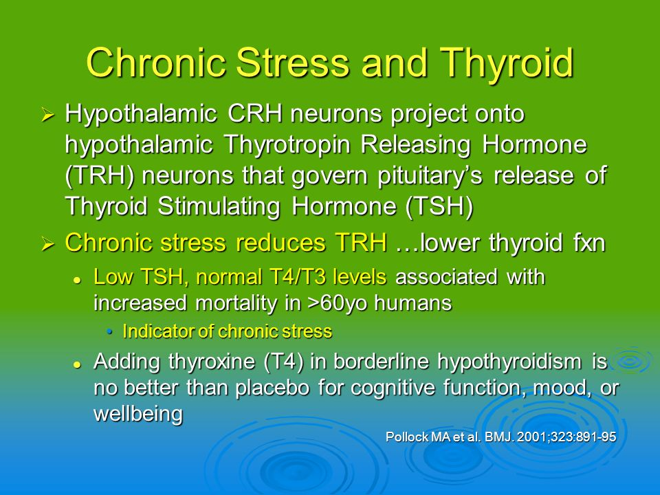 Chronic Stress and Thyroid