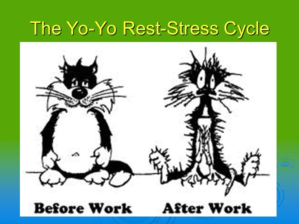 The Yo-Yo Rest-Stress Cycle