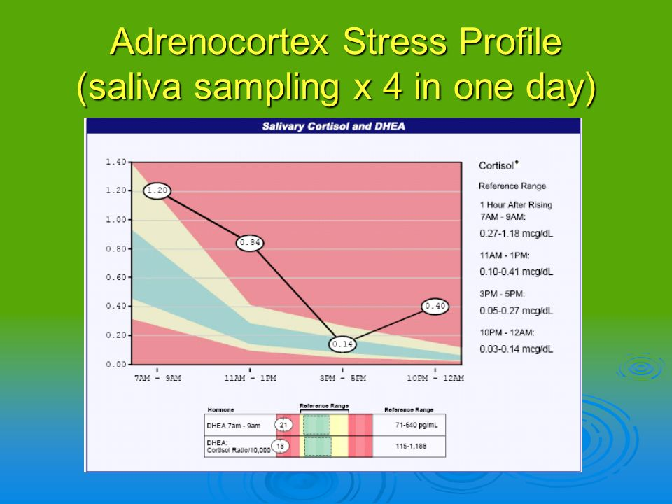 Adrenocortex Stress Profile (saliva sampling x 4 in one day)