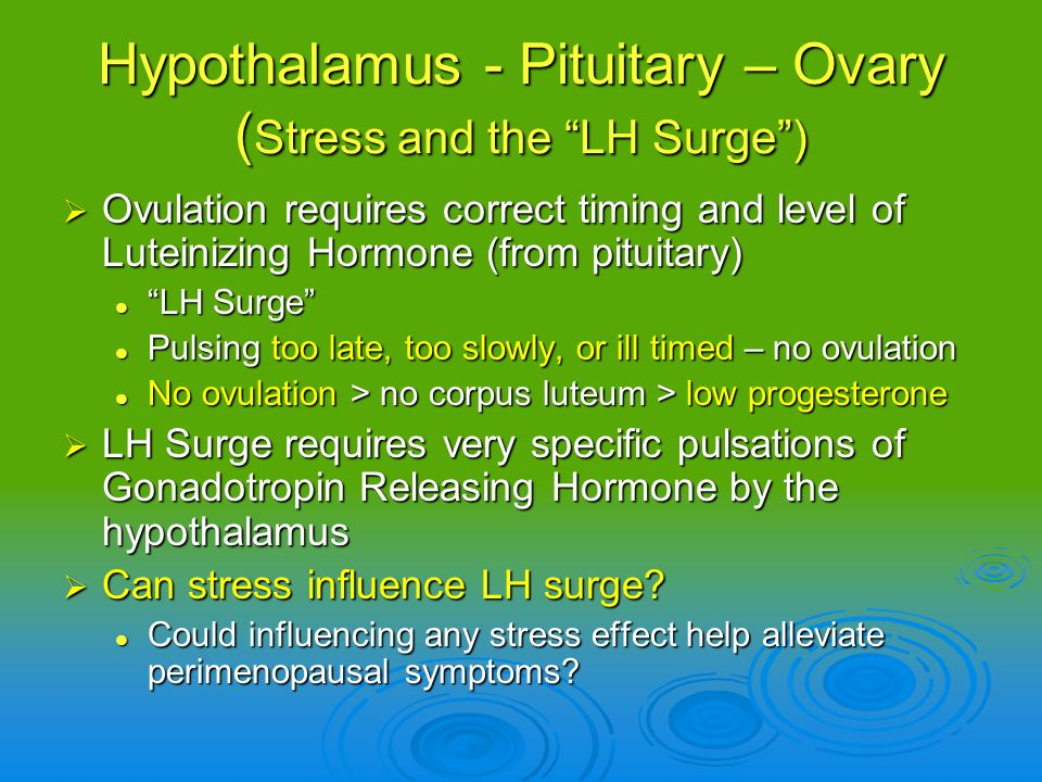 Hypothalamus - Pituitary – Ovary (Stress and the LH Surge )